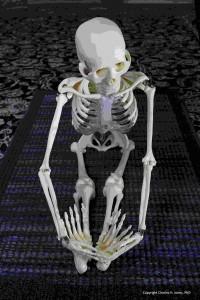 Yoga-skeleton-copyrighted-med